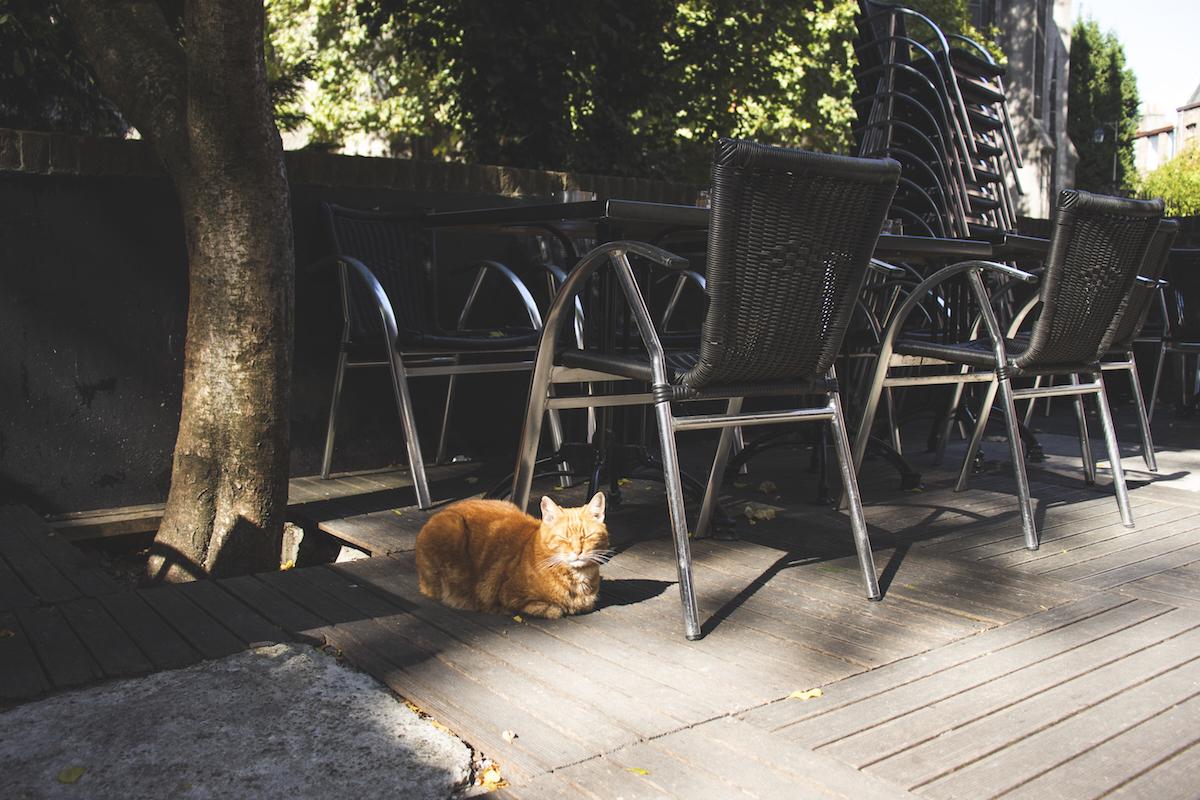 L'imaginaire bar lille aperitivo terrasse soleil