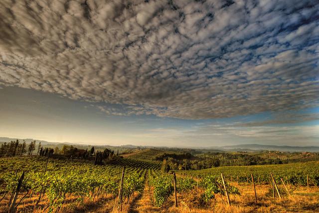 Chianti italie paysage toscane vignes