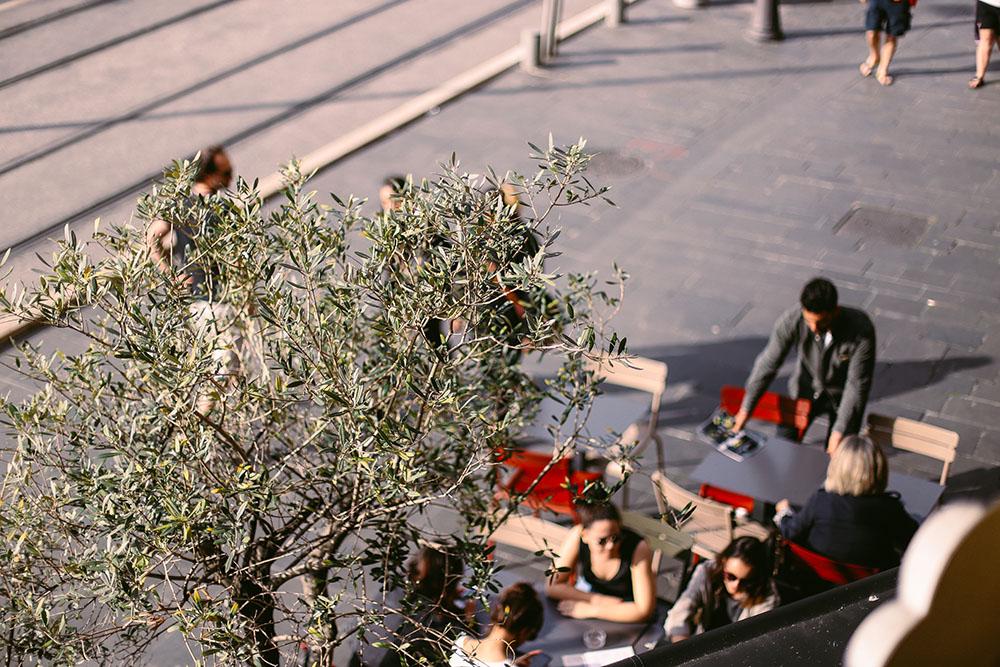 paneolio nice terrasse