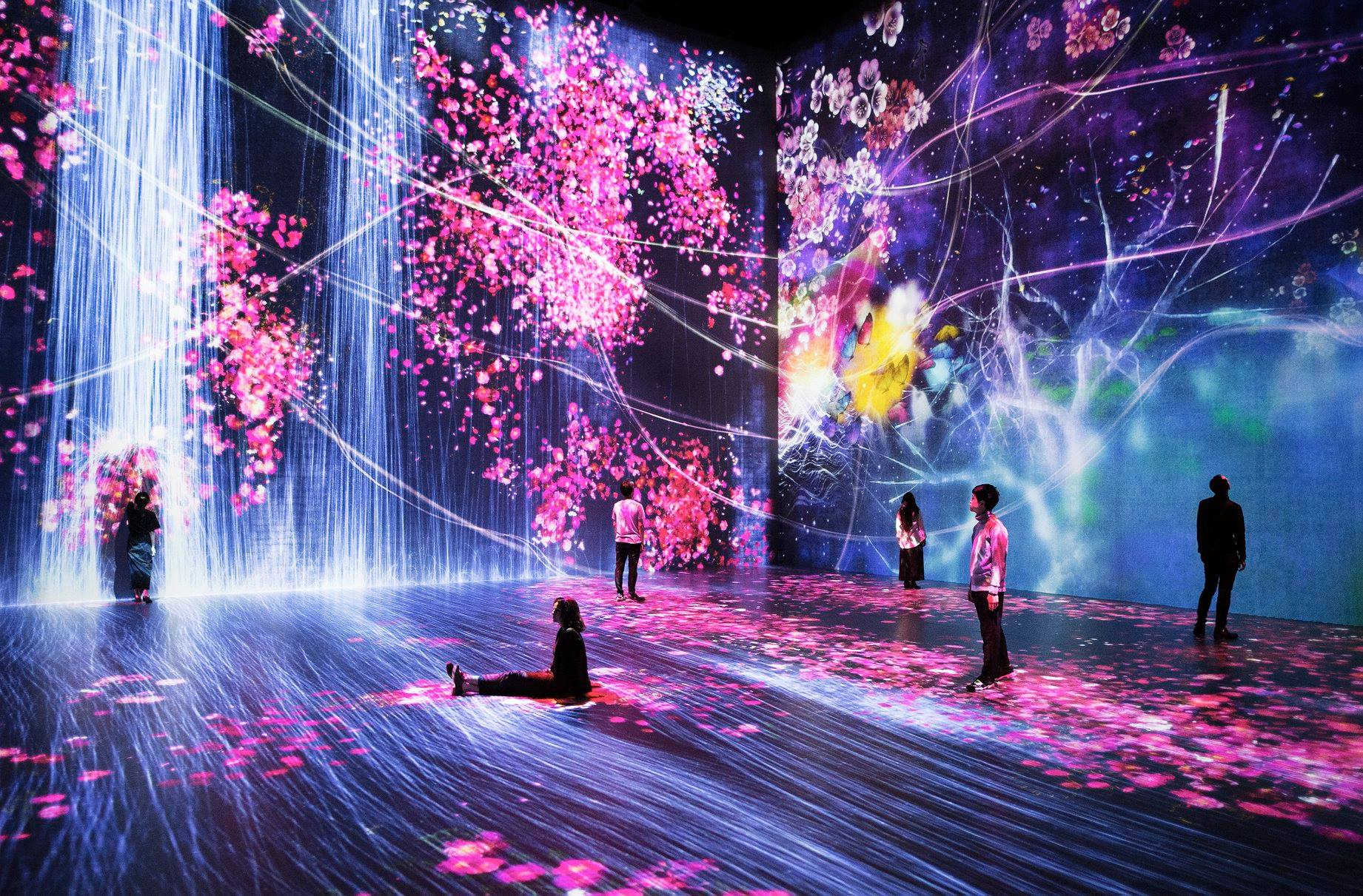TeamLab exposition paris halle la villette