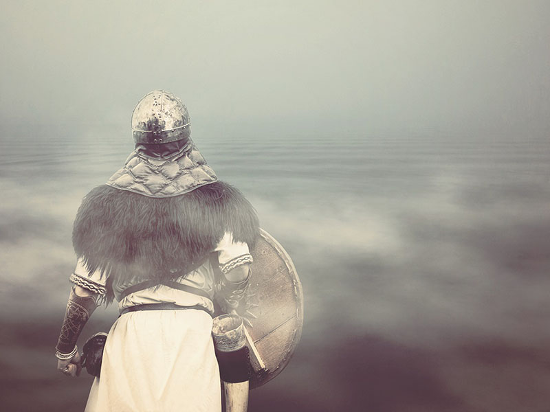 expo nous les appelons Vikings nantes